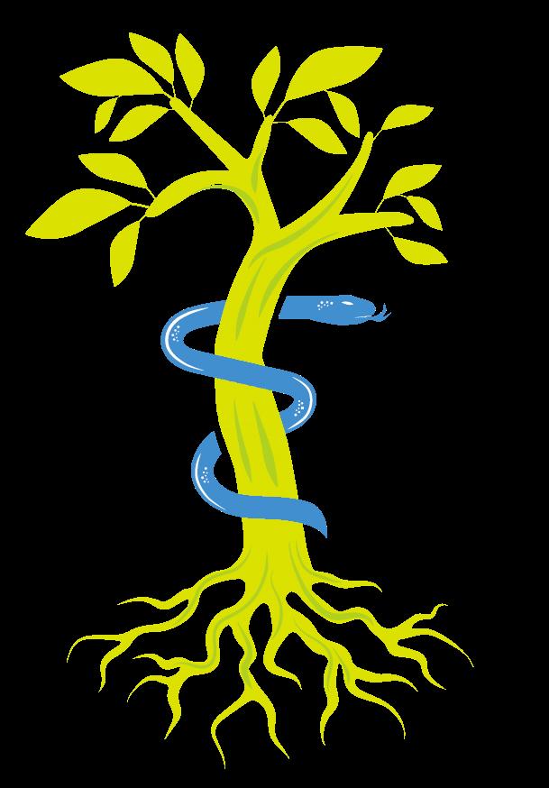 Praxis Dr. Preis | 79540 Lörrach Logo